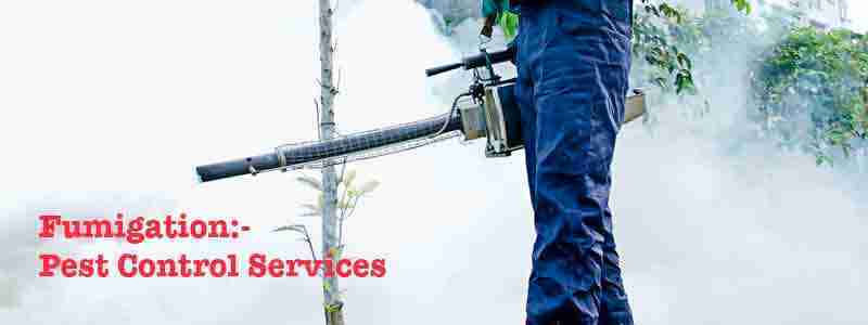 Fumigation Pest Control Services