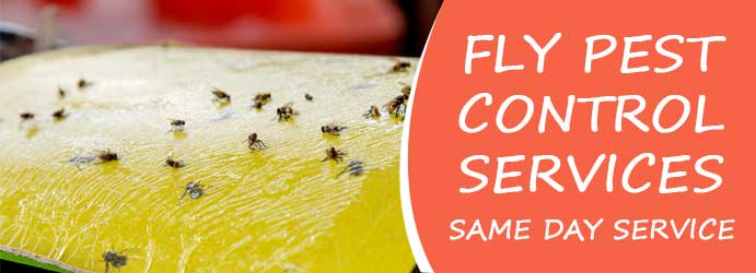 Fly Pest Control Services