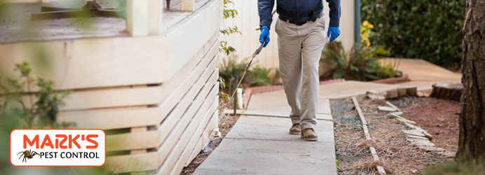 Pest Removal Treatments Paris Creek