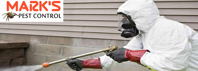 Professional Pest Control Services Upper Crystal Creek