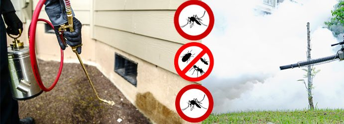 Commercial Pest Control Melbourne