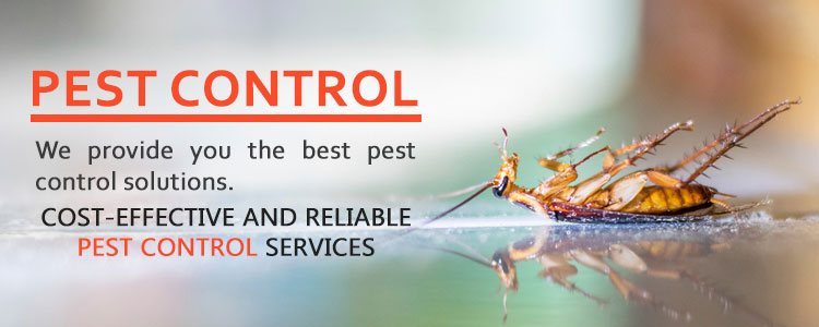Pest Control Lysterfield South