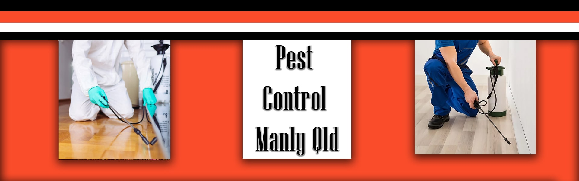 Pest Control manly-qld