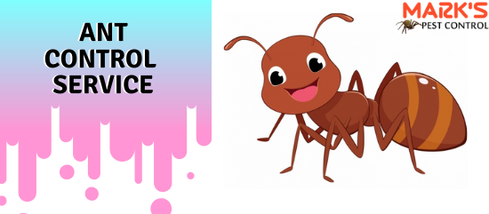 Marks Ant Control Service