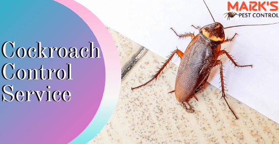 Marks Cockroaches Control Service