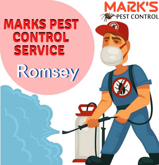 Marks Pest Control Service in Romsey