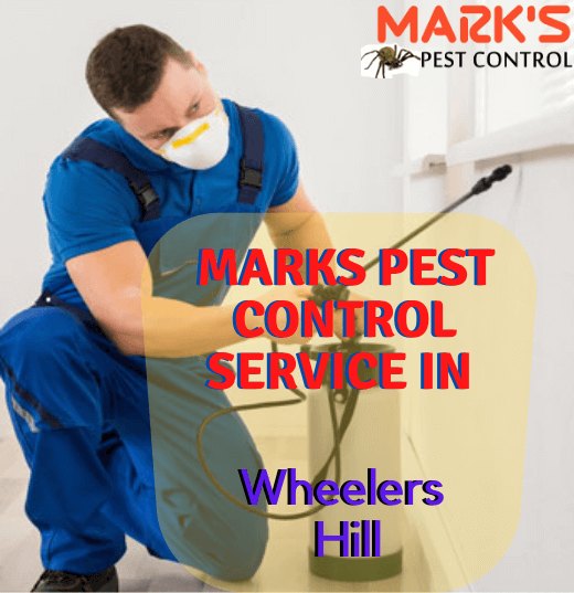 Marks Pest Control Service in Wheelers Hill