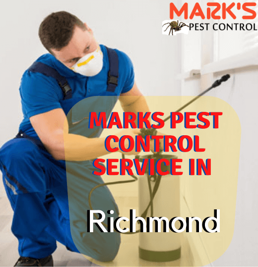 Marks Pest Control richmond