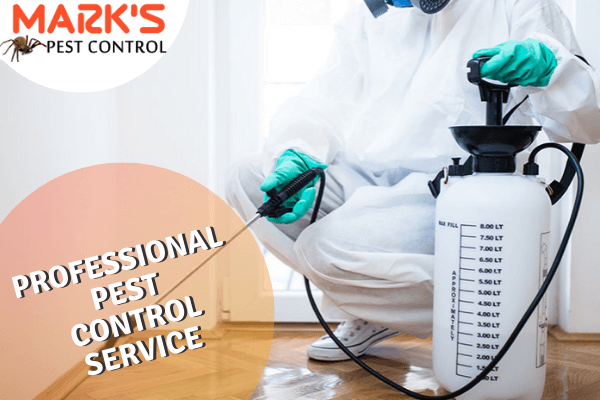 Marks Professional Pest Control service