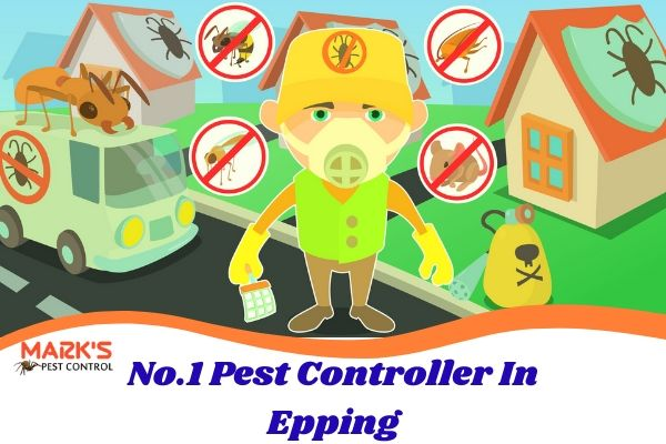 No.1 Pest Controller In Epping