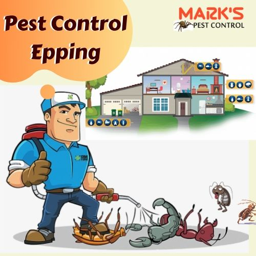 Pest Control Epping
