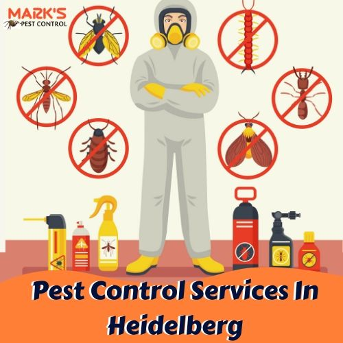 Pest Control Services In Heidelberg