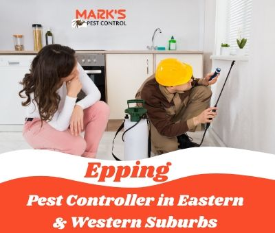 Pest Controller in Eastern & Western Suburbs Epping