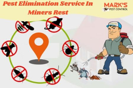Pest Elimination Service In Miners Rest