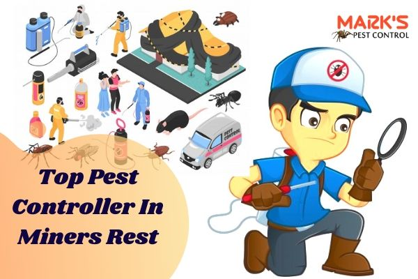 Top Pest Controller In Miners Rest