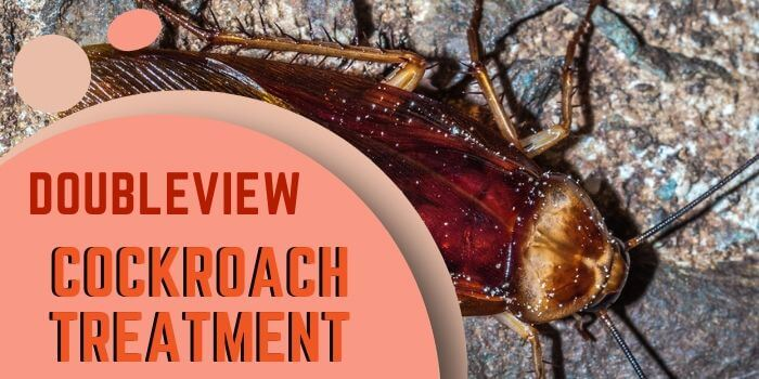 cockroach control Doubleview