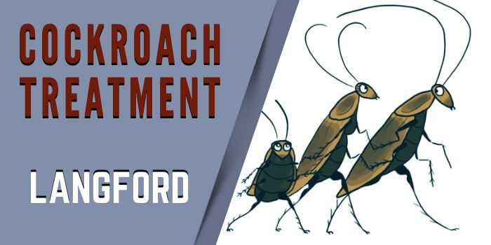 cockroach control Langford