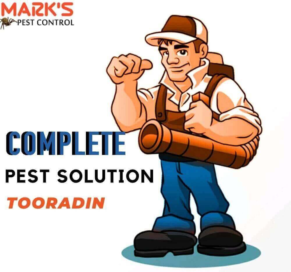 complete pest solution in tooradin
