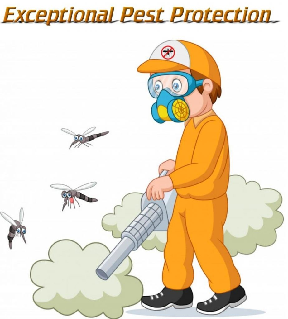 exceptional pest protection