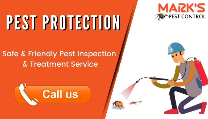 pest protection