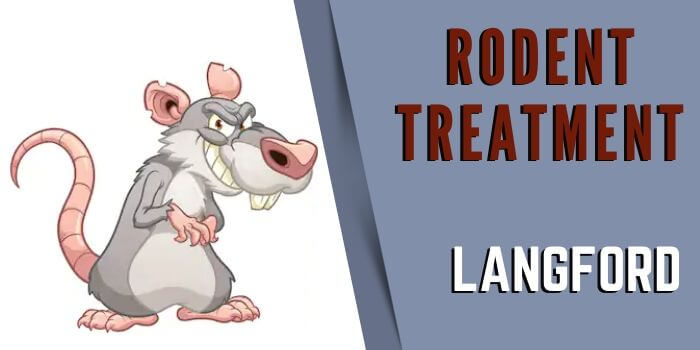 rodent control Langford