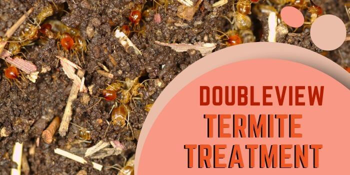 termite control Doubleview