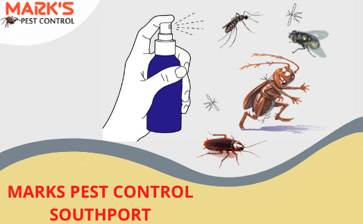 marks pest control service in southport