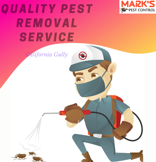 Quality Pest Removal California Gully