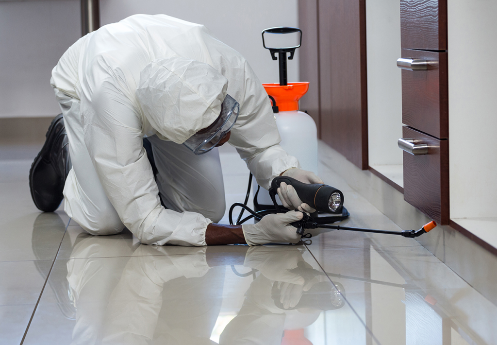 Commercial Pest Control Liverpool