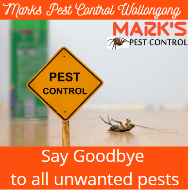 Marks pest control Wollongong