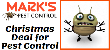 Professional Pest Control Wollongong Services