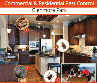 commercial & residential pest control