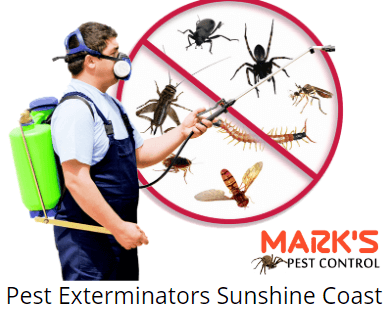 marks pest Sunshine Coast