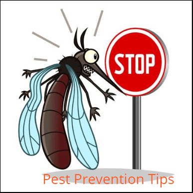 Pest Prevention Tips