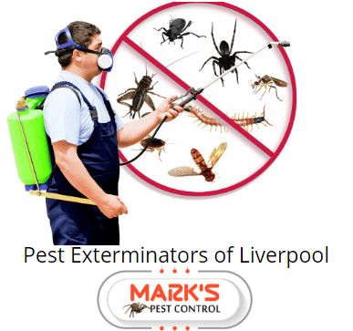 pest Prevention Liverpool