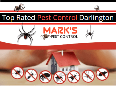 top rated Pest Control Darlington