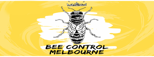 Bee Control Melbourne