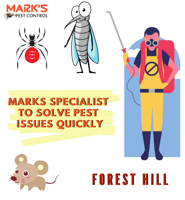 Marks Specialist to Solve Your Pest Issues Quickly