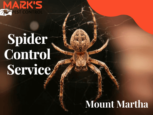 Marks Spider Control Service- Pest Control Mount Martha