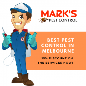 Best pest Control in Melbourne