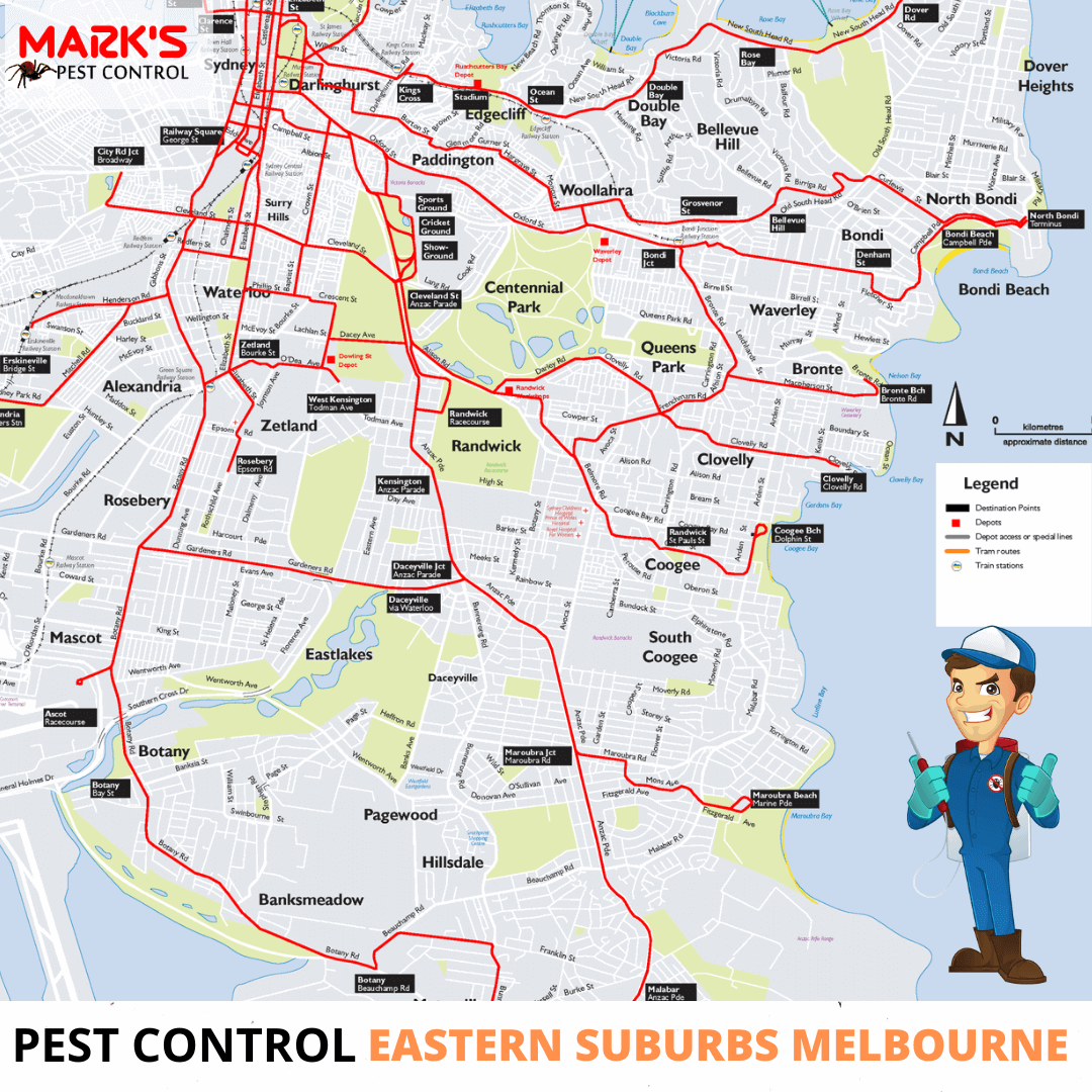 Pest Control Eastern Suburbs Melbourne