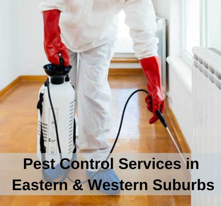 Pest Control Services in Eastern Western Suburbs