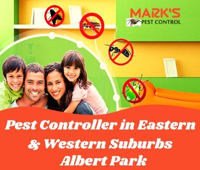 Pest Controller in Eastern & Western Suburbs Albert Park
