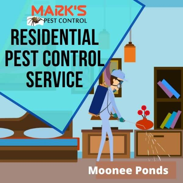 Residential pest control Moonee Ponds