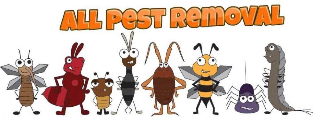 all pest removal