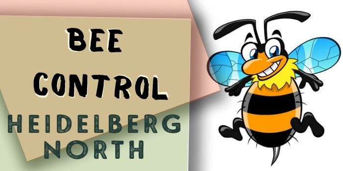 bee control Heidelberg North
