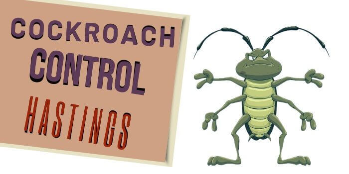 cockroach control hastings