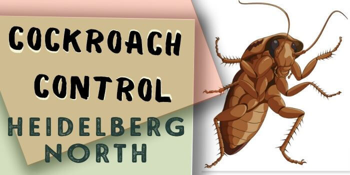cockroach control Heidelberg North