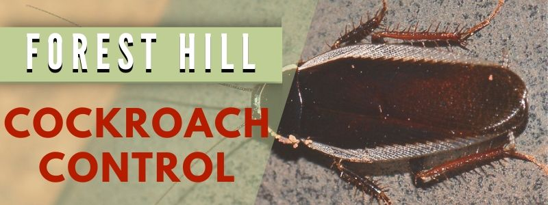 cockroach control forest hill