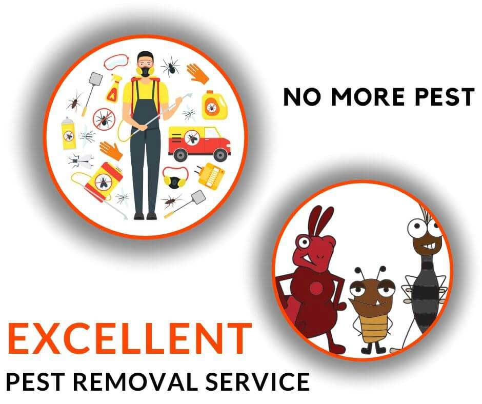 excellent pest removal